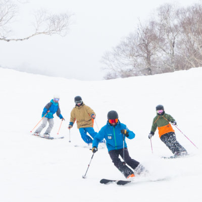 Go Snow Adult Group Lesson