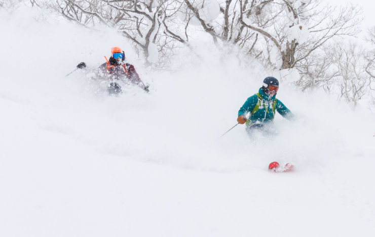Ski in Niseko