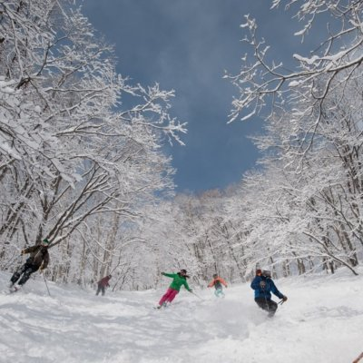 Fun and adventure in Niseko's famous powder.